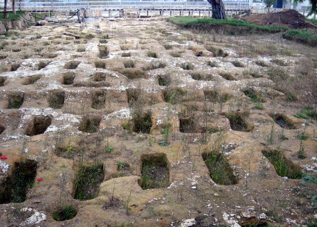 Trinitapoli, sito megalitico Madonna di Loreto (MeteoWeb)